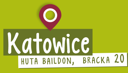 hompage_katowice